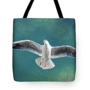 10427 Seagull In Flight Tote Bag