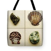 Seashell Composite Tote Bag