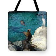 Seaworld Sea Lions Tote Bag