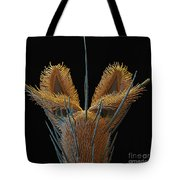 Sem Of Stable Fly Foot Tote Bag
