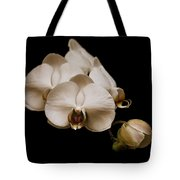 Sepia Orchids Tote Bag