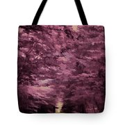 Shadow Path Tote Bag