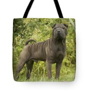 Shar Pei Dog Tote Bag