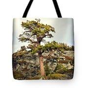 Sierra Landscape Tote Bag
