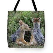 Silver-backed Jackal Pups Tote Bag