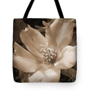 Single Portulaca Tote Bag