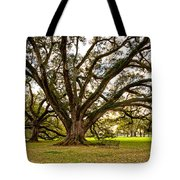 Sit A Spell... Tote Bag