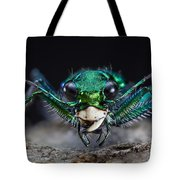 Six-spotted Green Tiger Beetle Tote Bag
