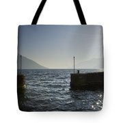 Small Port In Backlight Tote Bag