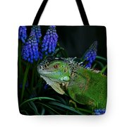 The Night Of The Iguana Tote Bag