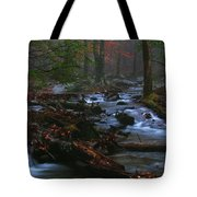Smoky Mountain Color Tote Bag