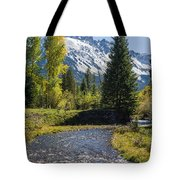 Sneffles And Stream I Tote Bag