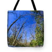 Snow Covered Road Leads Through The Wooded Forest Tote Bag
