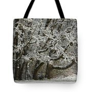 Snow On Trees Tote Bag