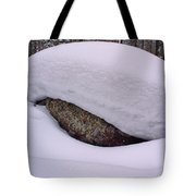 Snowviews Tote Bag
