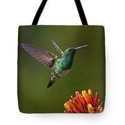 Snowy-bellied Hummingbird Tote Bag by Heiko Koehrer-Wagner