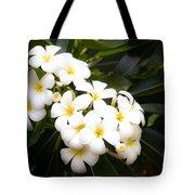 Soft Plumeria Tote Bag