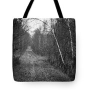 Solitude Forest Tote Bag