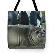 Southern Elephant Seal  Tote Bag
