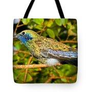 Sparkling Violet Ear Hummingbird Tote Bag
