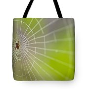 Spider Web With Dew Drops With Spider On Web Tote Bag