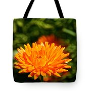 Spring Fresh  Tote Bag