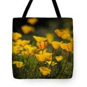 Springtime Poppies  Tote Bag
