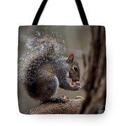 Squirrel II Tote Bag