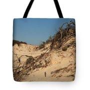 St Joseph Sand Dunes Tote Bag