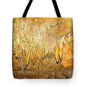 Stalactite Formations In Florida Tote Bag