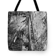 Stalactites And Stalagmites Tote Bag by Melany Sarafis