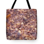 Starfish On The Beach, Lovers Key State Tote Bag