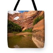 Stevens Arch - Escalante River - Utah Tote Bag