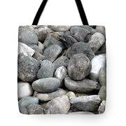 Stonescape Tote Bag