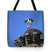 Storks On Top Of Valdecorneja Castle Tote Bag