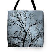 Stormy Trees Tote Bag