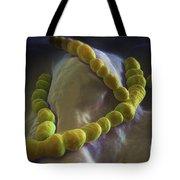 Streptococcus Pneumoniae Tote Bag