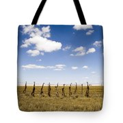Strung Up Foxes Tote Bag
