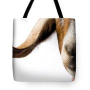 Studio Portrait Of A Mixed-breed Goat Tote Bag