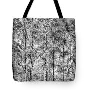 Summer Forest Trees Tote Bag