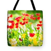 Sun Drenched Tulips - Featured 3 Tote Bag