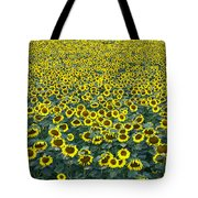 Sunflower Nirvana 13 Tote Bag