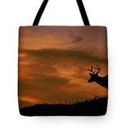Sunset Buck Tote Bag