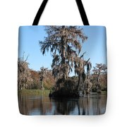 Walkula Springs Reflection Tote Bag