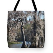 Swampreflection  Tote Bag