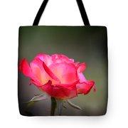 Sweet October Rose Tote Bag