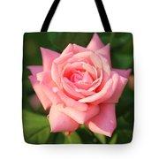 Sweet Pink Rose Tote Bag by Carol Groenen