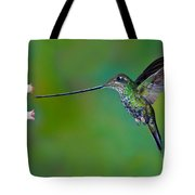 Sword-billed Hummingbird Tote Bag