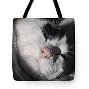 Taddeo Tote Bag