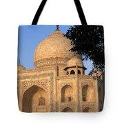 Taj Mahal In Evening Light Tote Bag